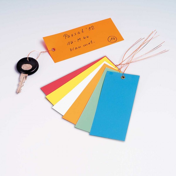 PVC-Hänge-Etikett groß, Format 120 x 50 mm