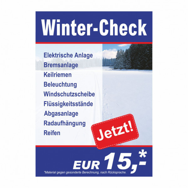 "Plakat DIN A1 ""Winter-Check - Details"""